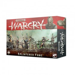 Warcry Warband: Splintered...